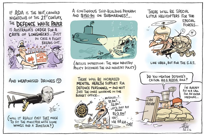 Cartoon: Defence White Paper