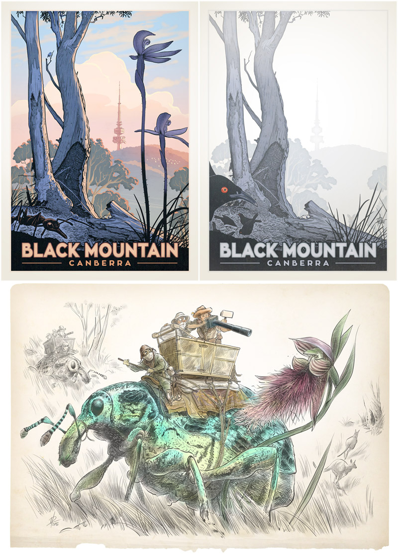 Drawings of Black Mountain
